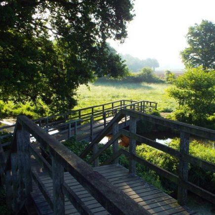 Wandelroute Door de Maasheggen, te Vierlingsbeek