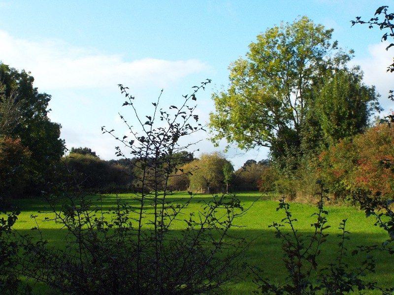Doorkijk naar een van de vele kleine graslanden