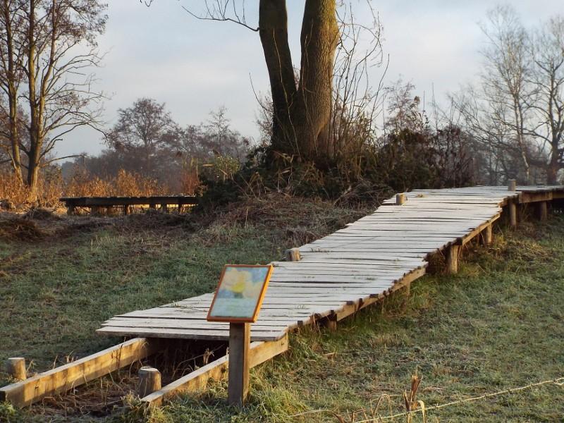 Knuppelbrugje naar de hoger gelegen natte Peelhorst
