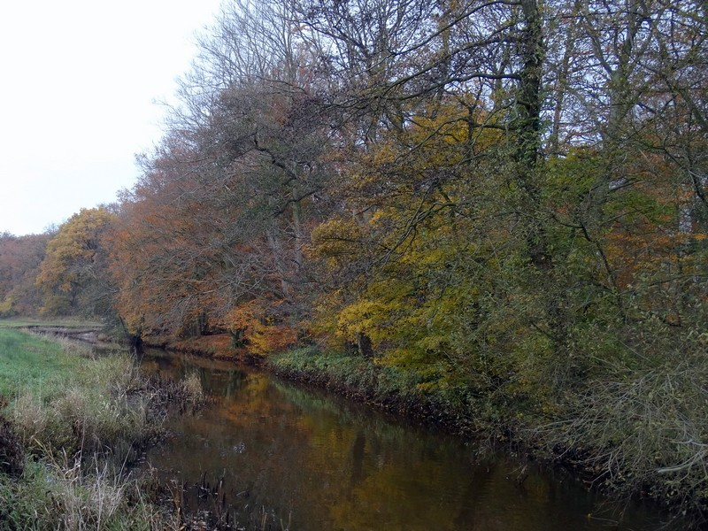 Vanaf de brug bij restaurant de Drentsche Aa in Schipborg.