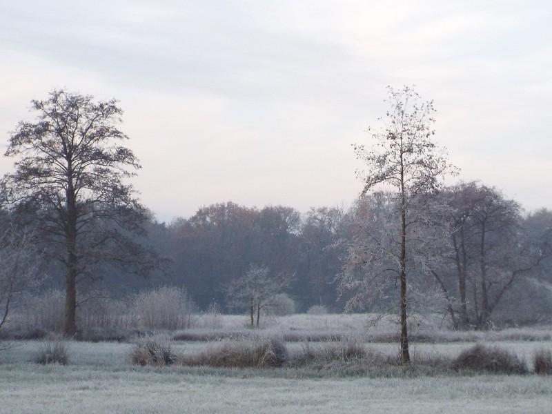 Wijstgronden in Slabroek.