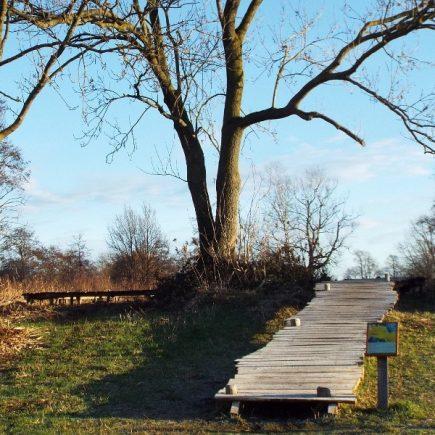 Wandelroute Breuken en wijstgronden-tocht, te Uden