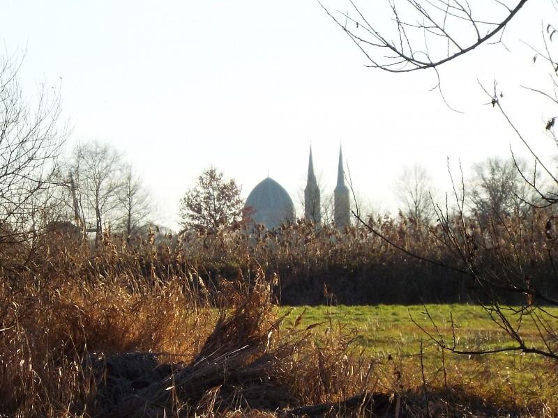 Loose Beemd met in de verte de kerktoren van Uden.