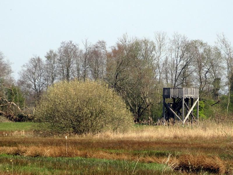 Een uitkijktoren in de verte