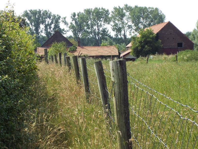 Op de achtergrond boerderij Heijerhof