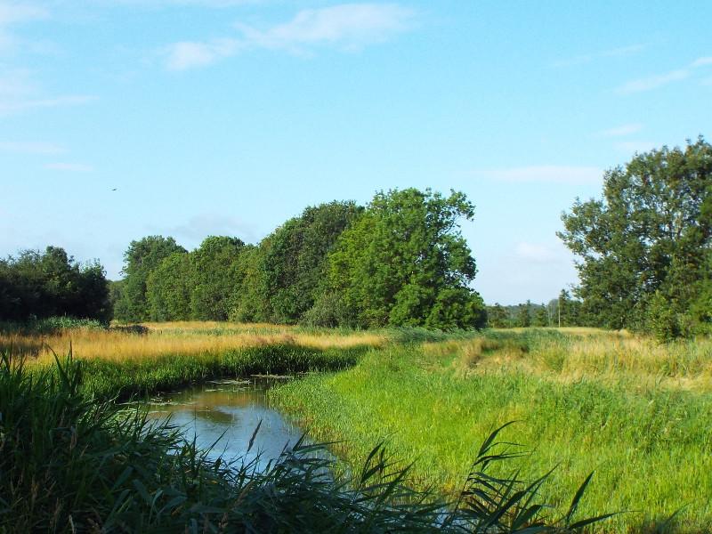 Tungelroyse Beek in Ellburg