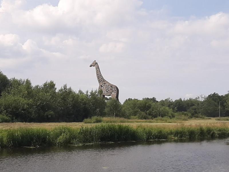 Willem-Alexanderkanaal