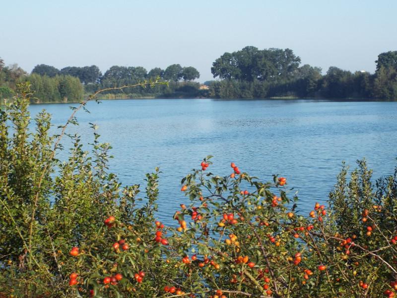 Uitzicht over een van de waterplassen