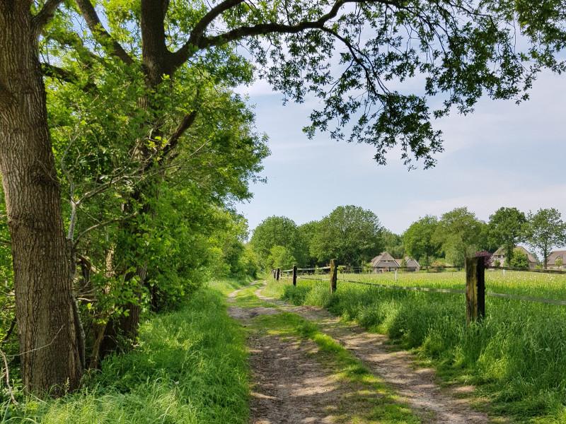 Een pad langs de golfbaan, punt 6