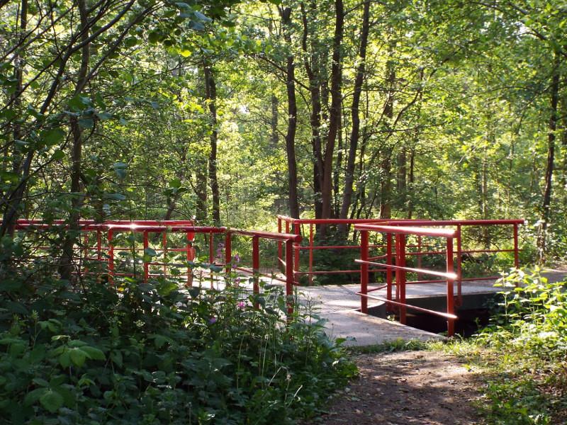 Viersprong op een brugje