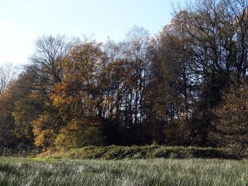 De Kieberg