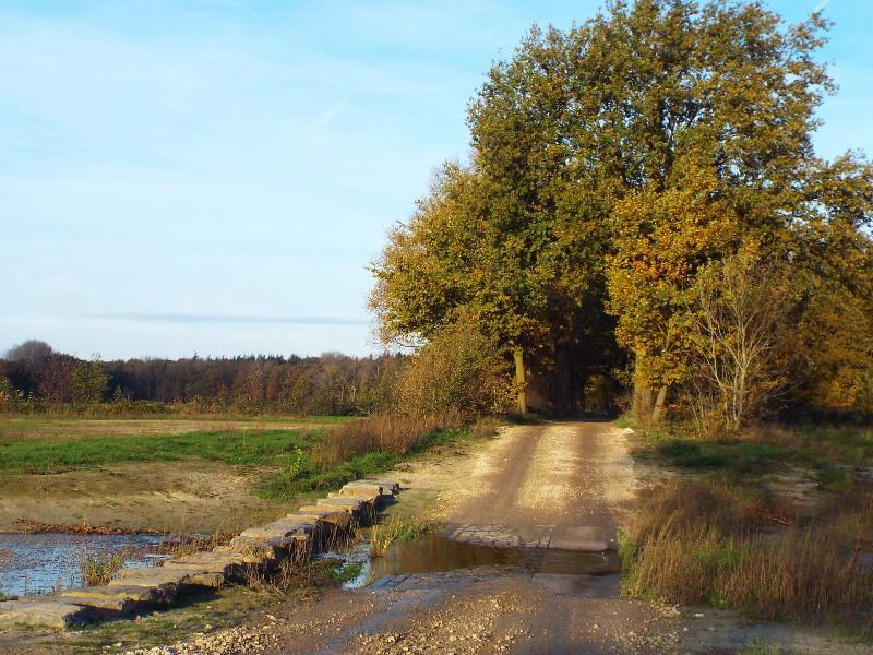 Een verlaagd pad met stapstenen