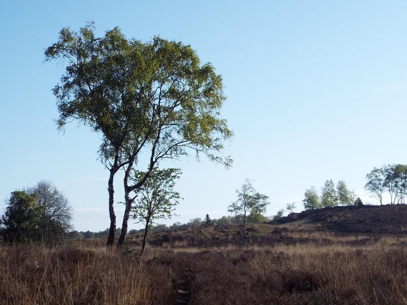 Uitzicht op de Springberg