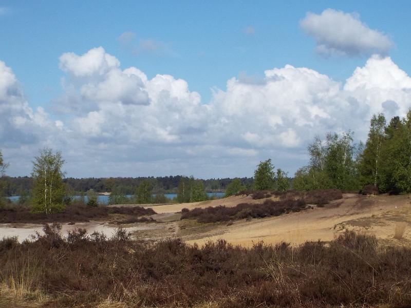 De Maasduinen aan de rand van het Reindersmeer