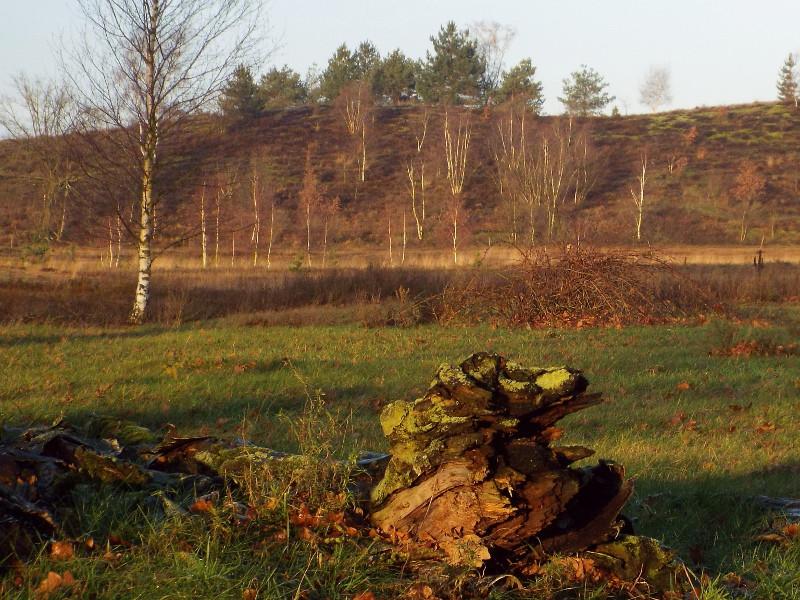 Op de achtergrond de Springberg
