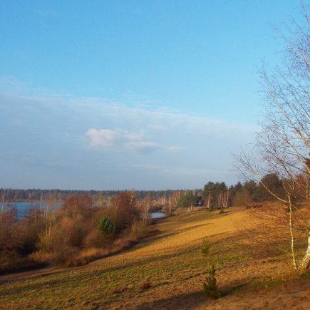 Wandelroute Rond het Reindersmeer, te Well