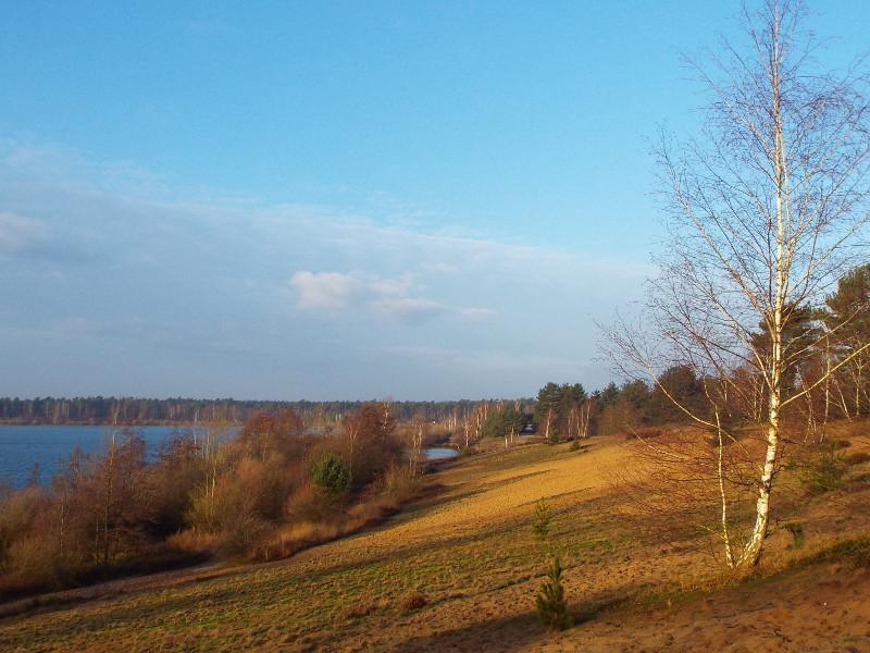 Uitzicht over het Reindersmeer