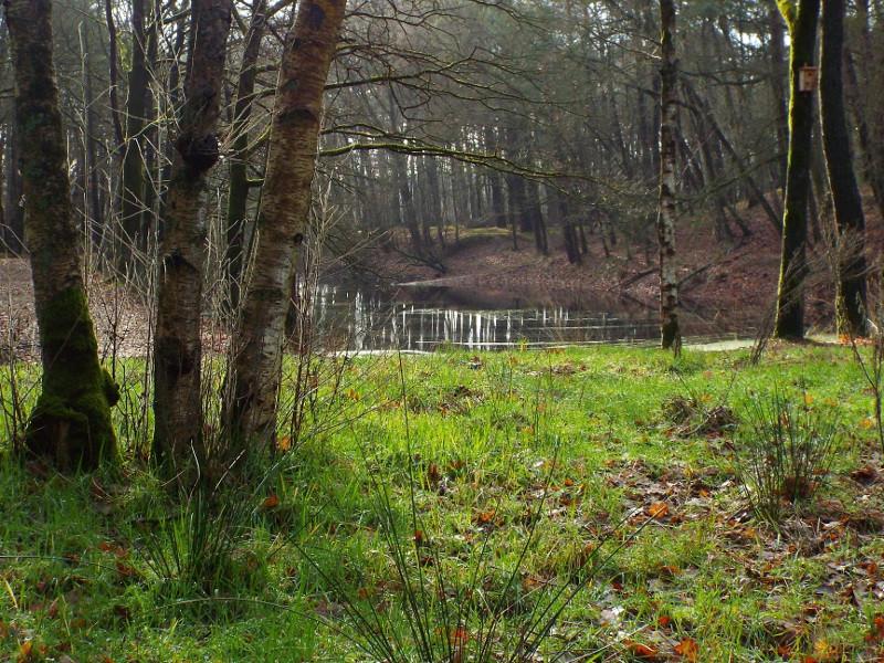 Gegraven proefsleuf op het voormalige Steenoventerrein
