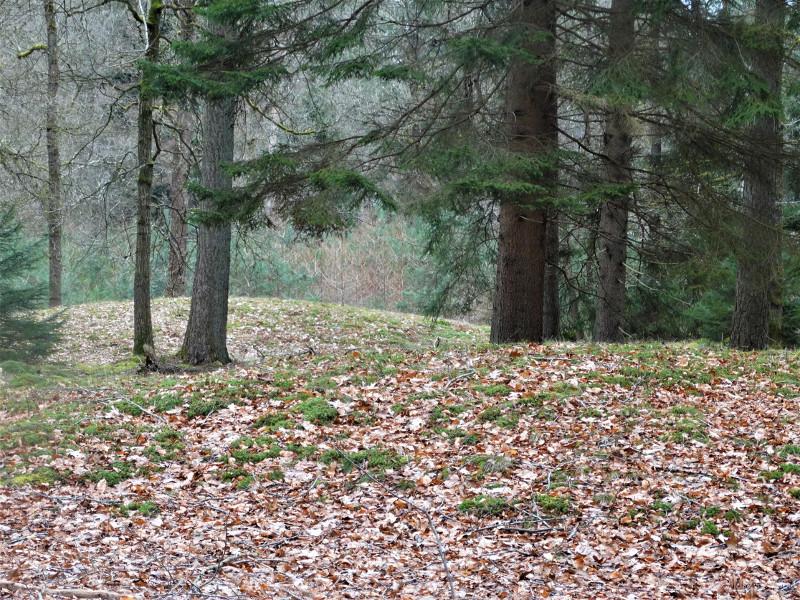 Twee grafheuvels gevonden