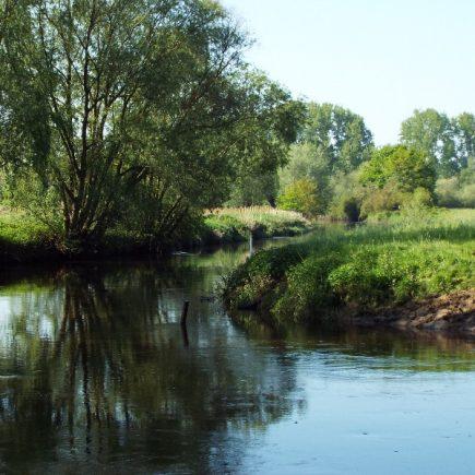 Wandelroute Het Meierijse Peppellandschap, te Sint-Oedenrode
