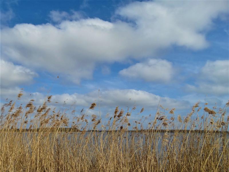 Langs het Oldambtmeer