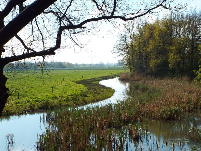 Waterplas langs de ringdijk
