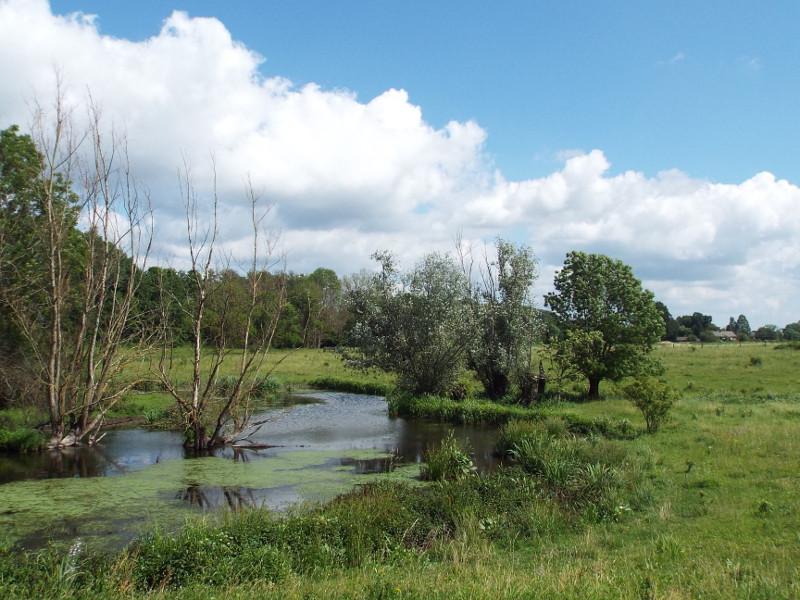 Beekdal van Molenbeek-Siebersbeek