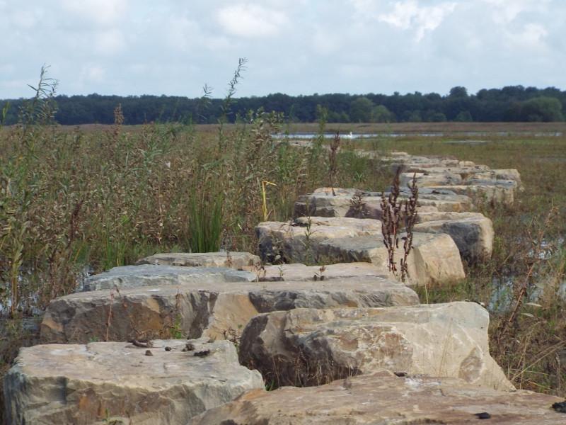 Het struinpad met stapstenen na het hoogwater