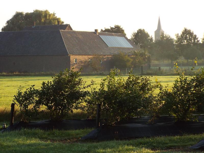 Boerderij op landgoed Huize De Kolck